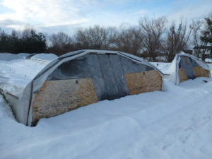 winter16_greenhouse1