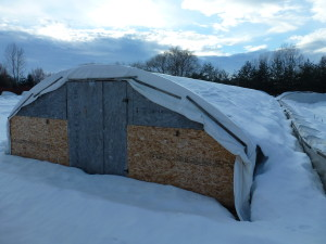 winter16_greenhouse2